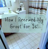 How I renewed my Grout for $6