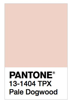 Ways to incorporate Pantone spring color pale dogwood into your home and your wardrobe