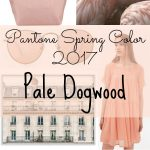 I'm Loving It! Pantone Spring Color Pale Dogwood